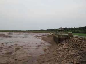 Low Tide in the Bay of Fundy, Wolfville. The tide rises & falls 16 feet every 12 hours.