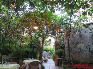 Dinner in Sorrento (lemon trees everywhere)